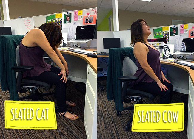 One Down Dog | 7 Ways To Do Yoga at Your Desk